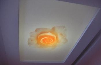 floral-ceiling-04